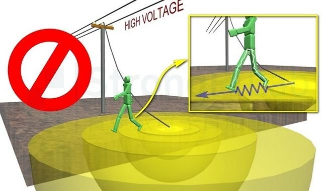 靠近高壓落點的步間電壓會致命